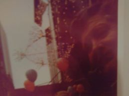 Pic I took of Dad; Macy's Day Thanksgiving Parade Stands